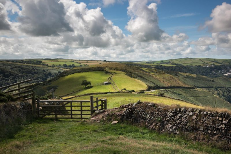 Enchanting Exmoor Photography Workshop