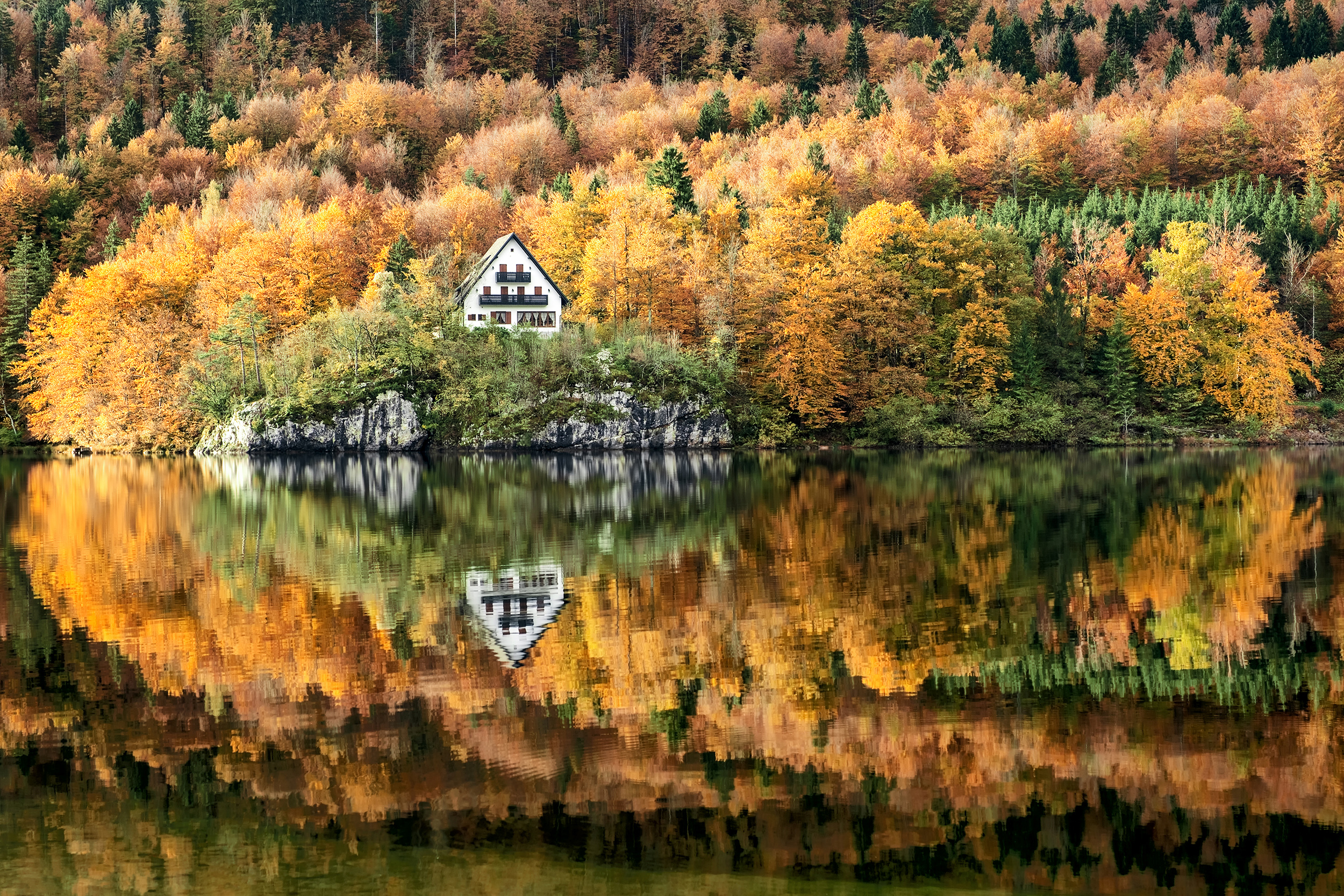 Lake Bohinj Autumn Reflection