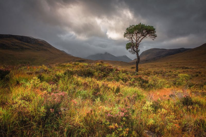 Torridon & Wester Ross Landscape Photography Workshop